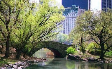 The Perks Of Central Park!