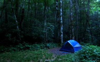 Outdoors In The Great Smoky Mountains