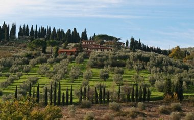 Voted: A Perfect Day In The Capital Of Tuscany