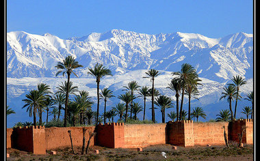 Captivating Marrakesh