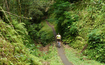 bali eco cycling tour